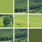 foto_agronomia